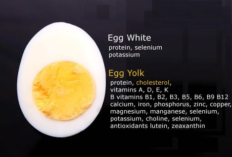 picture of an egg cut in half, with information about minerals and vitamins found within