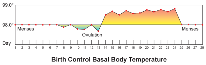 Figure 2: Ovulation typically occurs a few days before the increase in body temperature.