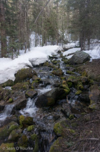 Bull Creek emerging from snow