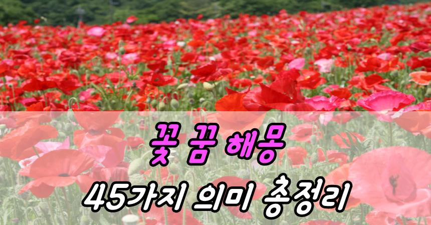 꽃 꿈 해몽 45가지 의미 총정리
