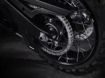 Im Gegensatz zu den anderen Revolution-Max-Bikes erfolgt bei der Pan America die Kraftübertragung zum Hinterrad per Kette