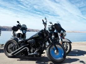 Auch Harleys waren ordentlich vertreten