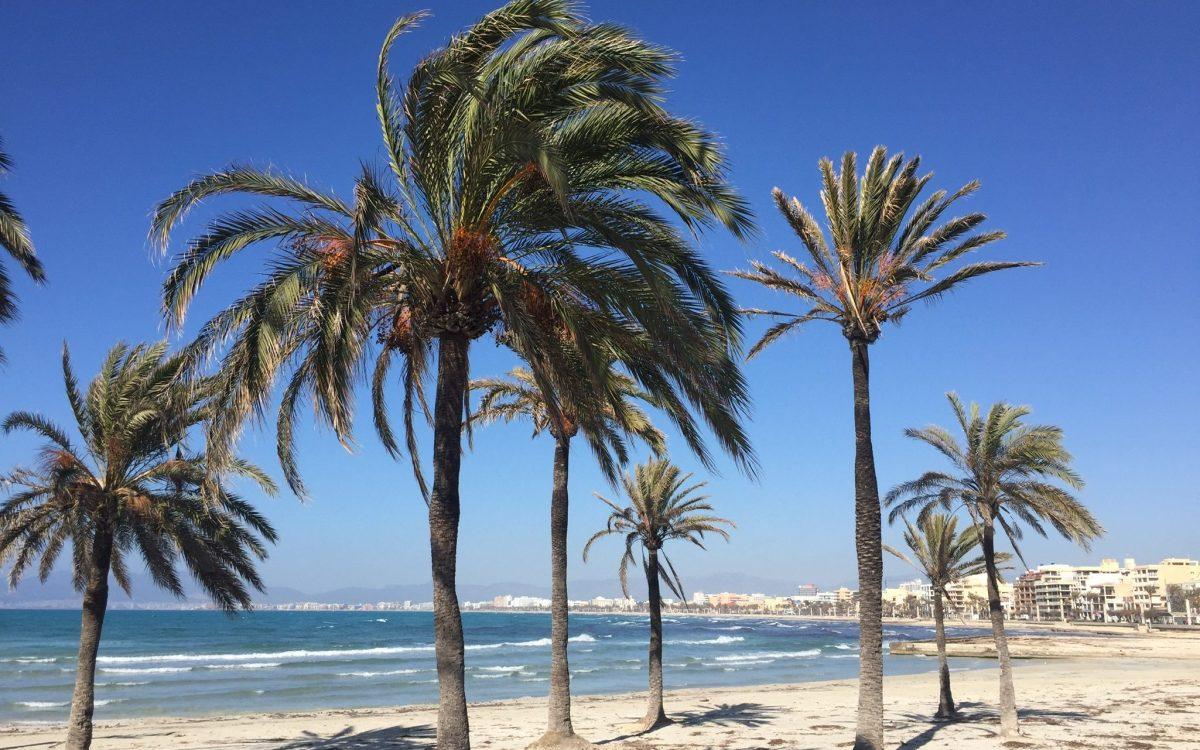 Mit unserem Mallorca T-Shirt hast du das perfekte Outfit für den Strand.