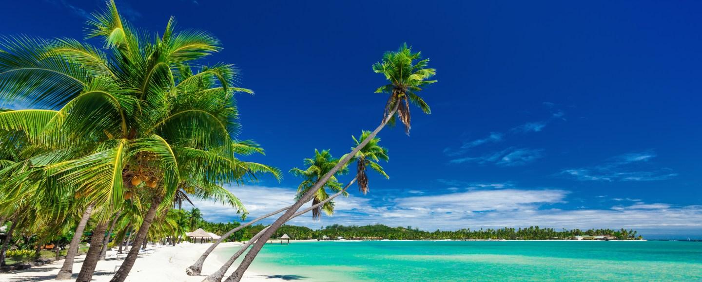 Palm trees over white beach on a a Plantation Island, Fiji, South Pacific