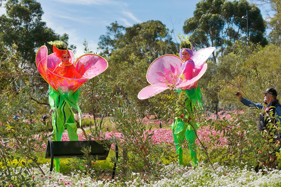 Two people dressed in flower costumes at Kings Park Festival with a visitor taking a photo on their smartphone