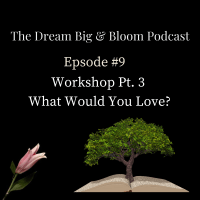 Podcast #9 DreamBuilder Workshop Pt. 3: What Would You Love?
