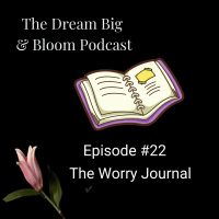 Episode #22: The Worry Journal