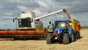image of grain harvest