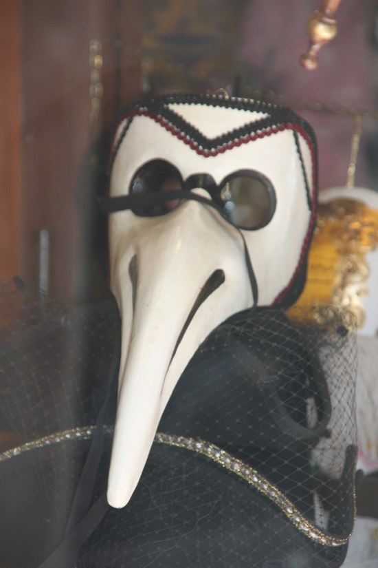 The Venetian plague doctor's mask