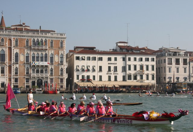 The amazing Pink Lionesses of Venice
