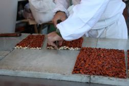 Waiting for a slice of freshly made nut croccante
