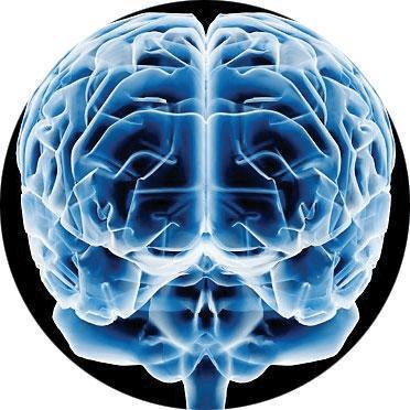 A Teoria das Inteligências Múltiplas de Gardner (1/6)