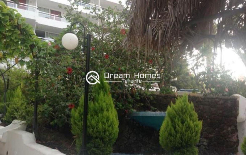 Lovely Studio in Ponderosa Complex in Costa Adeje Terrace Real Estate Dream Homes Tenerife