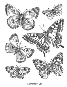 Butterfly Brilliance Stamp Set