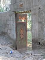 Al Ain Oasis 12