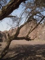 Wadi Kub 1