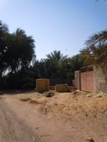 Al Qattara 24
