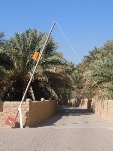 Al Qattara 25