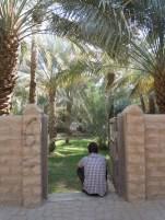 Al Qattara 3