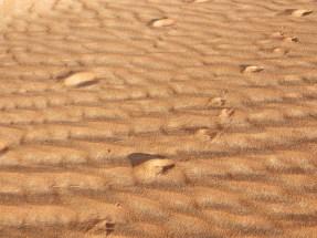 Footprints 18