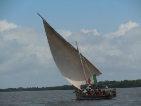 Dhows 18