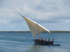 Dhows 7