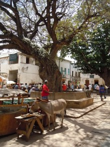 Town square in front of Lamu Fort