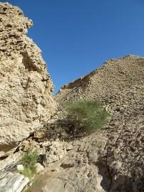 Wadi Al Nayhan 9