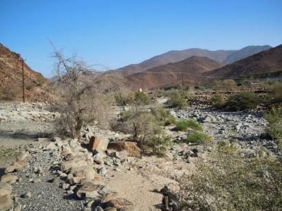 wadi Helo 11