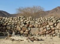 wadi Helo 12