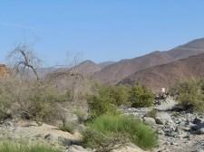 wadi Helo 5