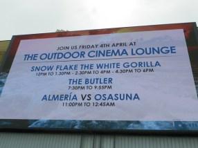 Outdoor cinema 3