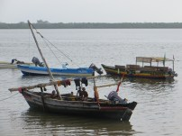 Dhow 21
