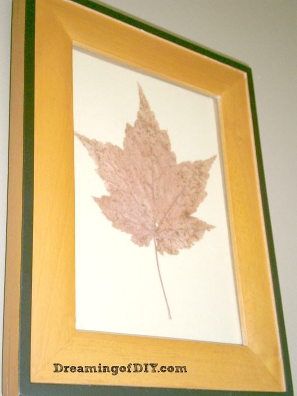 Maple Leaf Art
