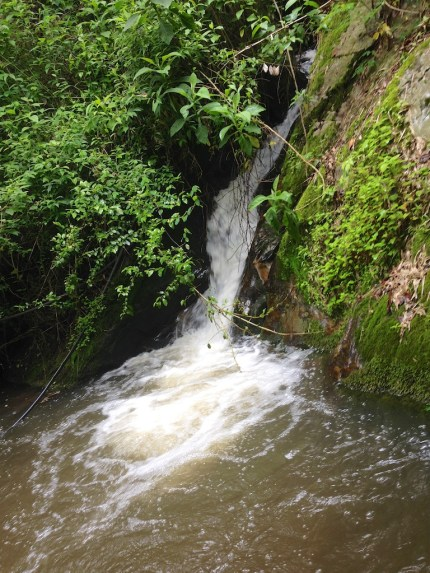 creek-adventure 12