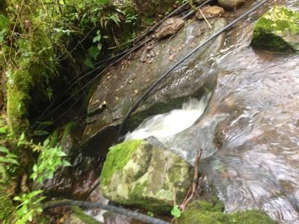 creek-adventure 2