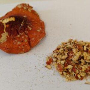 Amanita muscaria (shredded)