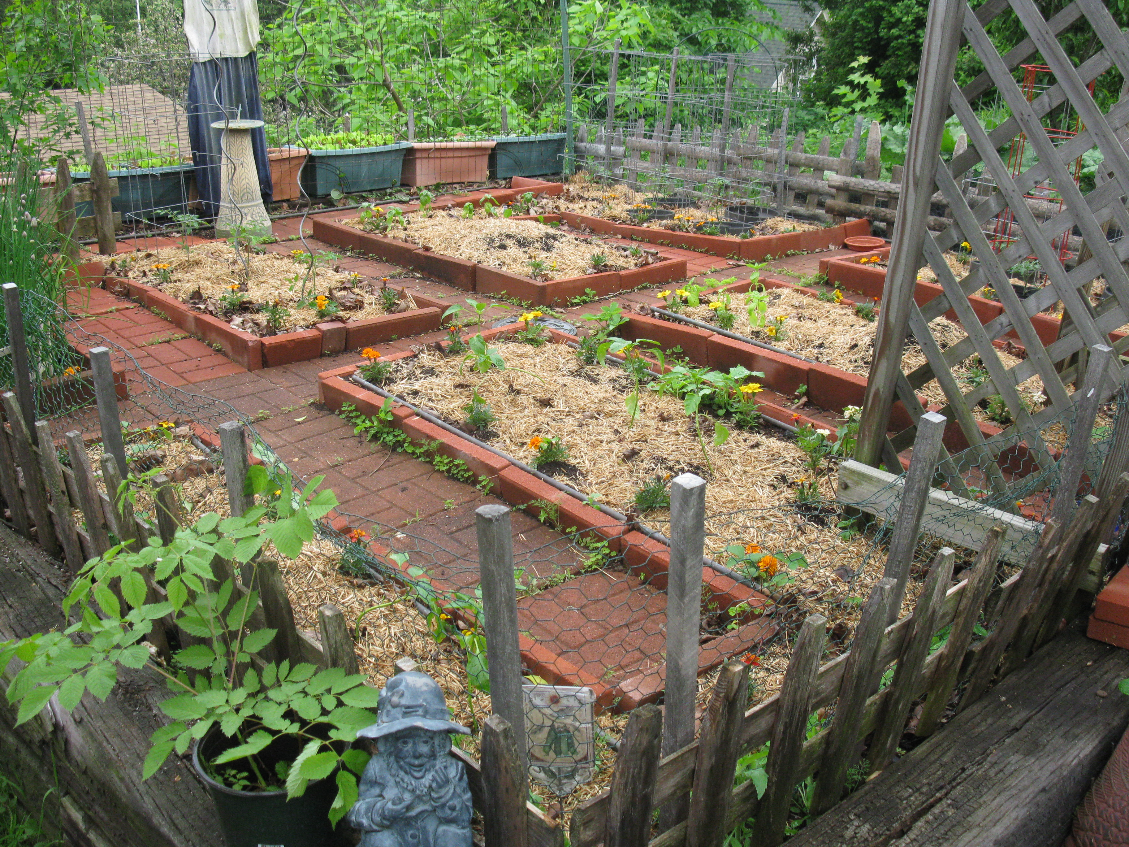 Small Space Vegetable Gardening In New England