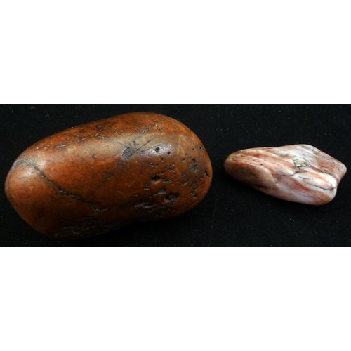 Are What Dinosaur Stones Gizzard