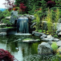 53 cheap landscaping updates that make a splash 49