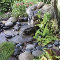 53 cheap landscaping updates that make a splash 52