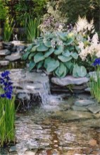 53 cheap landscaping updates that make a splash 8