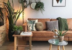 11 Indoor Plants For Home Or Office – Home Decor 28