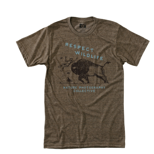 HippyTree Respect Tee Brown