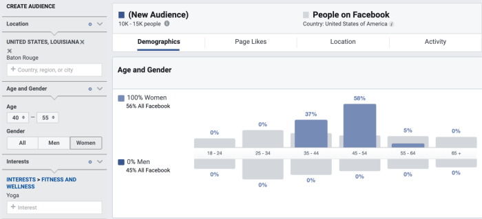 Facebook Audience Insigghts