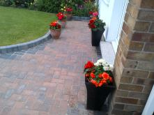 Pots on the Front Garden Filled with Begonia's