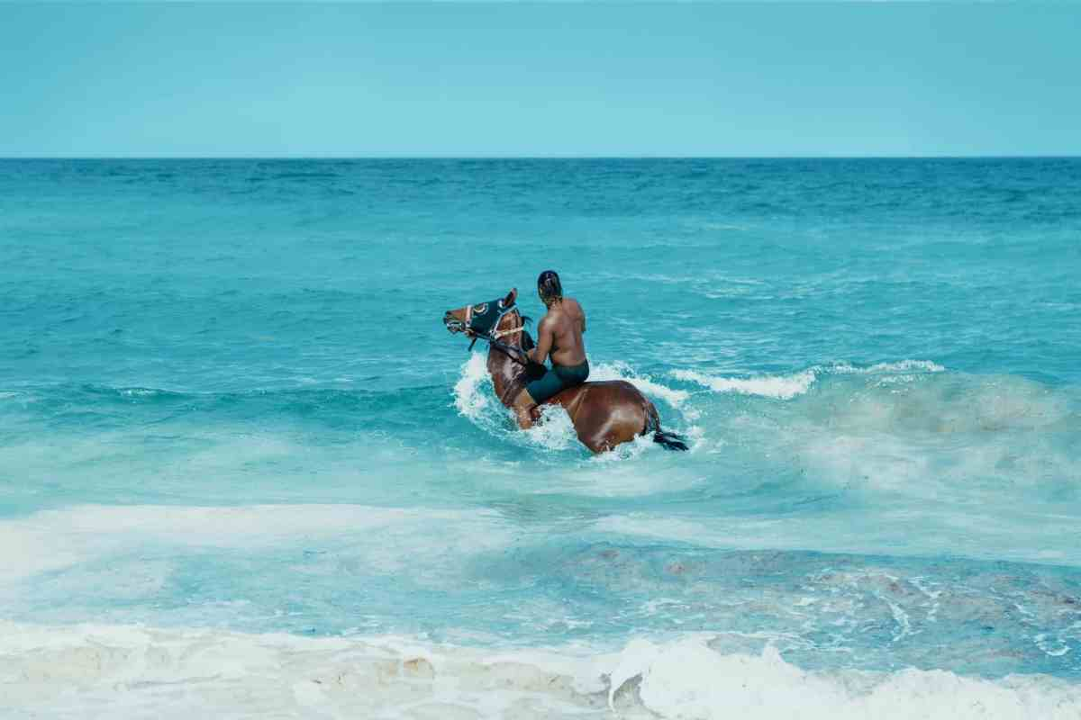 photo of man riding on brown horse on ocean water