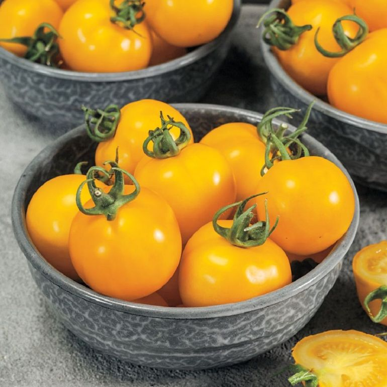 Egg tomato - Types of Tomatoes (Varieties)