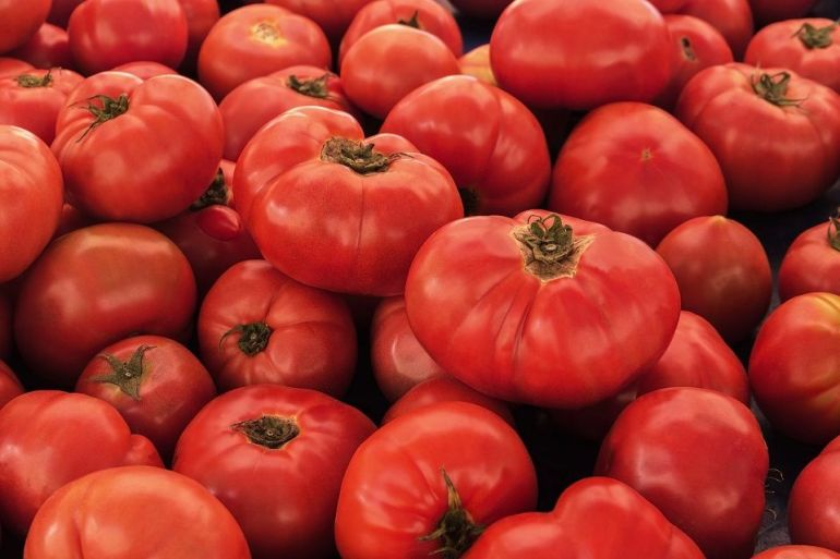 VR Moscow tomato - Types of Tomatoes (Varieties)