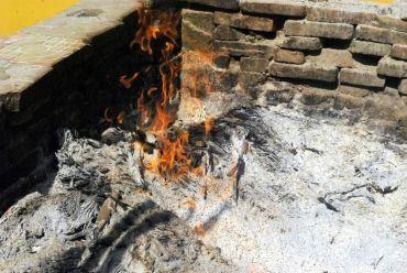 Wood Ash in Garden: 11 Practical Uses